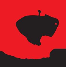 Optimal Project CZ